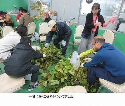 171029_shokuiku1_.jpg