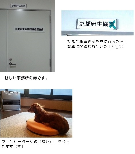 20151225_tanshin.jpg